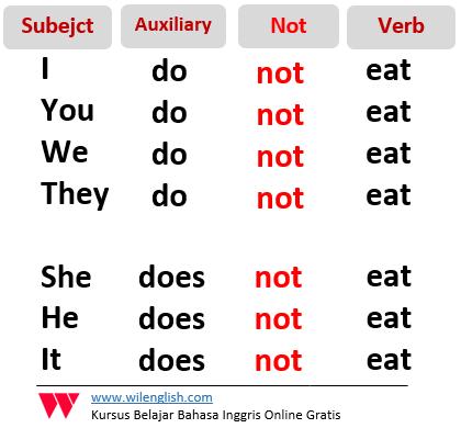 Gambar: Rumus dari negative verbal sentence