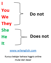 do dan does sebagai auxiliary untuk kalimat negatif